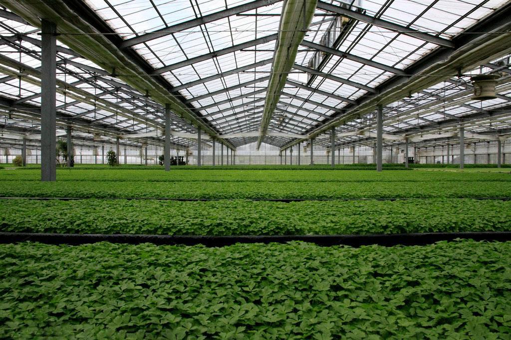 太阳能温室大棚供热供暖