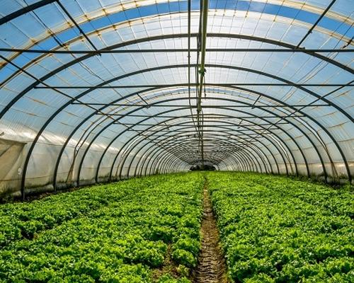 西藏农牧高效农业温室供暖项目