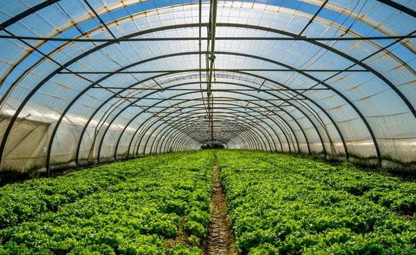 农林业生态节能解决方案