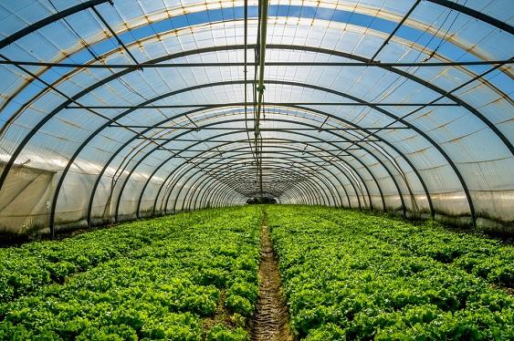 温室大棚供热供暖解决方案