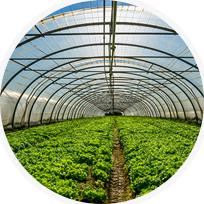 农业生态节能解决方案