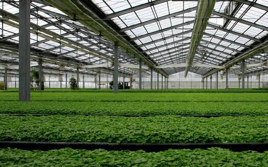 太阳能温室大棚供热供暖系统